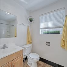 Full Bath with Window